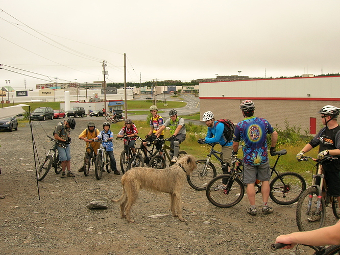 Cycling293